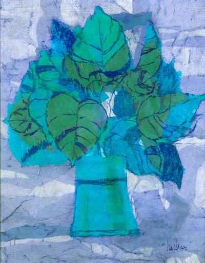 Coleus Turquoise