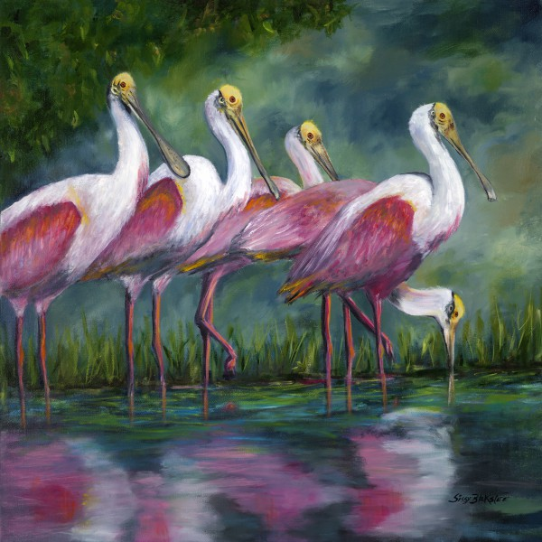 Spoonbill Time