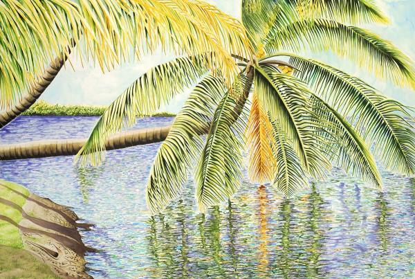Cayman Breeze